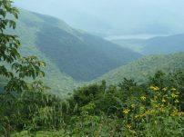 Smoky Mountains, Tennessee/North Carolina border