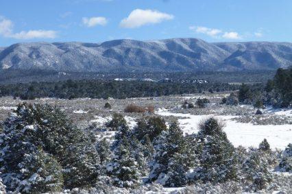 New Mexico/Colorado Border