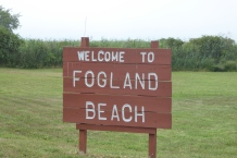 Welcome to Fogland!