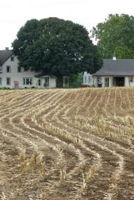 Amish Farm near Bird-in-Hand, Pennsylvania