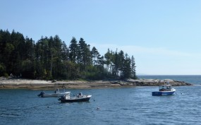 Blue Spruce Island near S. Thomaston, ME
