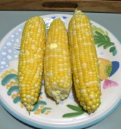 """Buttah and Sugah"" sweet corn from a local farm stand"