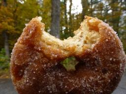 Cider Donuts at Cider Bellies, Moultonborough Farm, HN