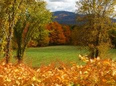 Western Massachusetts