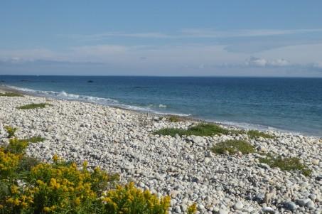 Horseneck Beach, Massachusetts