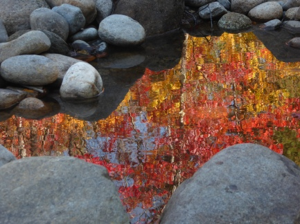Fall, with a little ripple