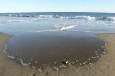 Autumn Ocean Crashing
