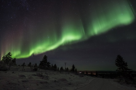 Then, the aurora explodes in all its glory. Note: ALL aurora pictures were taken by our tour guide, Mr. Jouni Männistö who runs Ivalo Trek Lapland. My camera could not capture any photos of this. I am so grateful that Jouni took these images of what I saw!