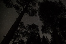 Jouni captured the night sky above us