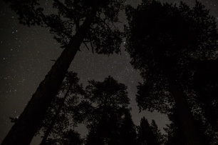 Jouni captured the night sky above us