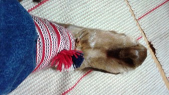 Trying on a pair of handmade reindeer slippers!
