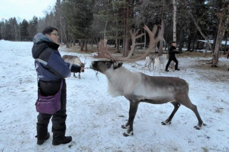 James plays a game of tug of war with one of the deer!