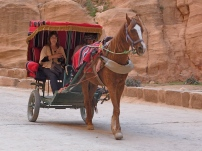 Traditional carriage ride for those not wanting to hike through the Siq