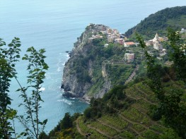 Corniglia from above