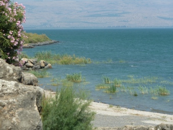 The shores of Galilee where Jesus met Peter and Andrew