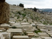 Ancient Jewish Cemetery