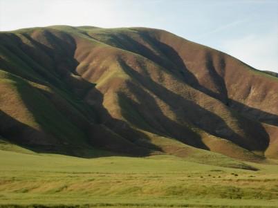 Classic California hills
