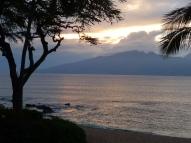 Silvery Maui