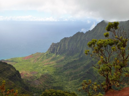 Kalalau Valley Lookout