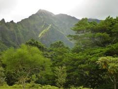 Windward Oahu