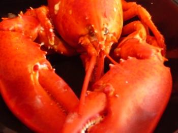 Lobstah is what's for dinnah...