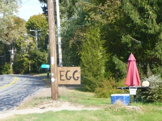 New England humor?