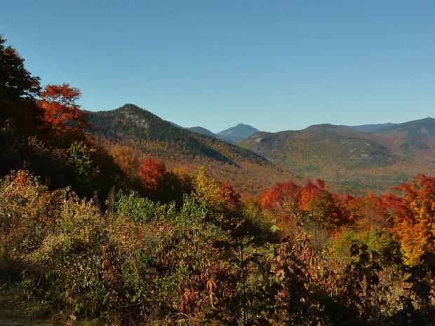 Bear Notch View