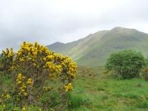 Morning near Glencoe, Scotland