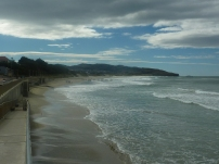 The beach at Dunedin