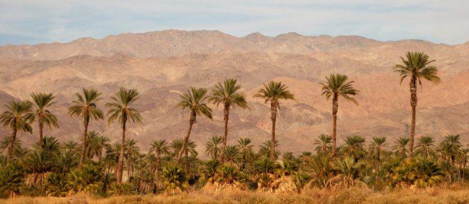 California desert near Palm Springs