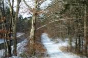 Snowy scene in Rochester, Massachusetts