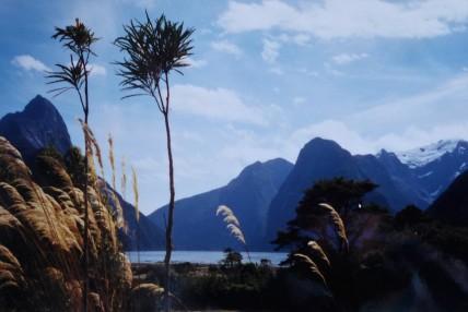 The views near Te Anau