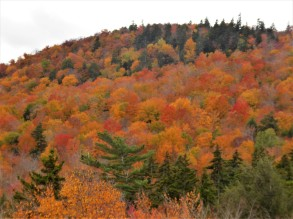 A patchwork quilt in the White Mountains