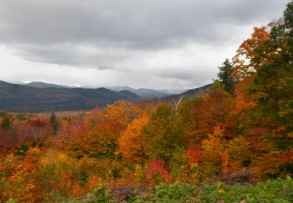 Along Bear Notch Road in the White Mountains