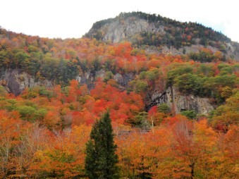 Granite ledges and layers of foliage, NH