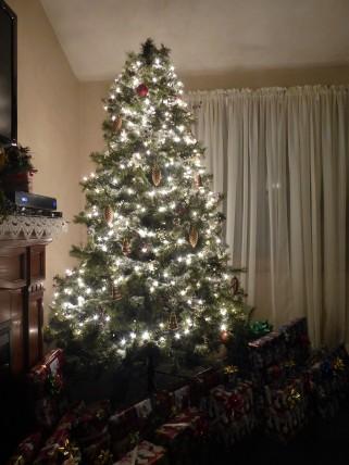 Joyce's lovely tree...