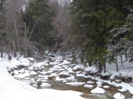 Snow in New Hampshire's White Mountains