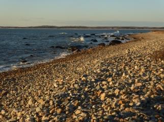 Beach at Gooseberry Neck