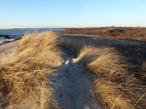 Dunes at Gooseberry Neck