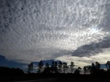 Carolina skies...