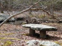 Is this an ancient Rhode Island? Or maybe it's just a bench!