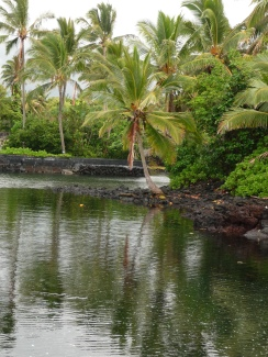 The former Kapoho Tidal Pools prior to 2018