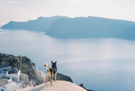 Enjoying the view: Oia, Santorini, Greece