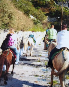 Ascending the cliff on donkeys, Fira