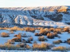 Roaming Wyoming...