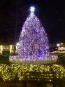 The Square in Collierville by Night