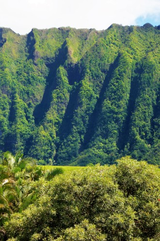 The Ko'olau Mountains, Oahu