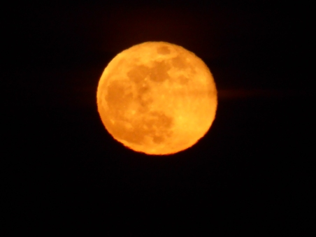 Moonrise from my deck